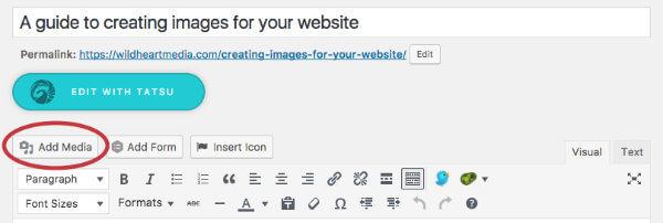 Screenshot of Add Media in WordPress
