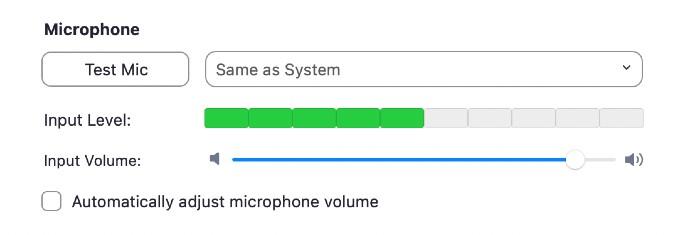 Zoom Microphone Screenshot